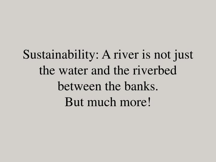 Sustainability: A river is not just the water and the riverbed between the banks.