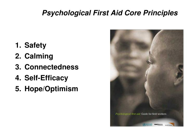 Psychological First Aid Core Principles