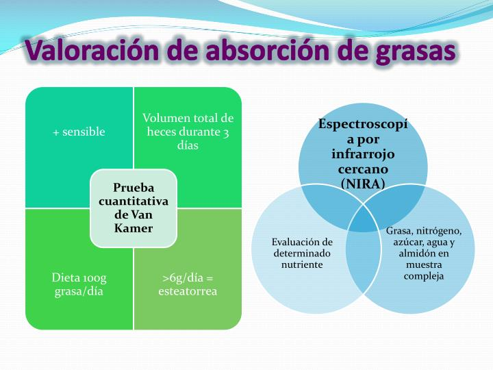 Valoración de absorción de grasas