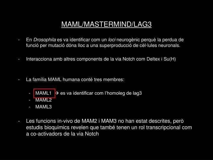 MAML/MASTERMIND/LAG3