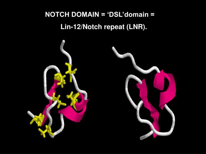 NOTCH DOMAIN = 'DSL'domain =