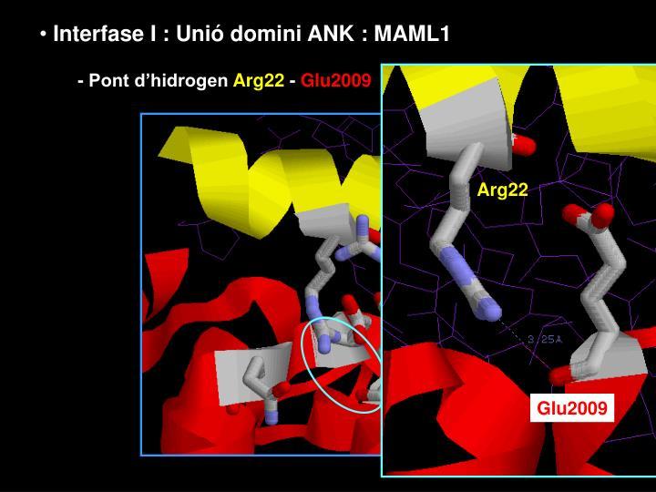 Arg22