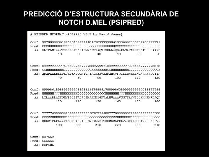 PREDICCIÓ D'ESTRUCTURA SECUNDÀRIA DE NOTCH D.MEL (PSIPRED)
