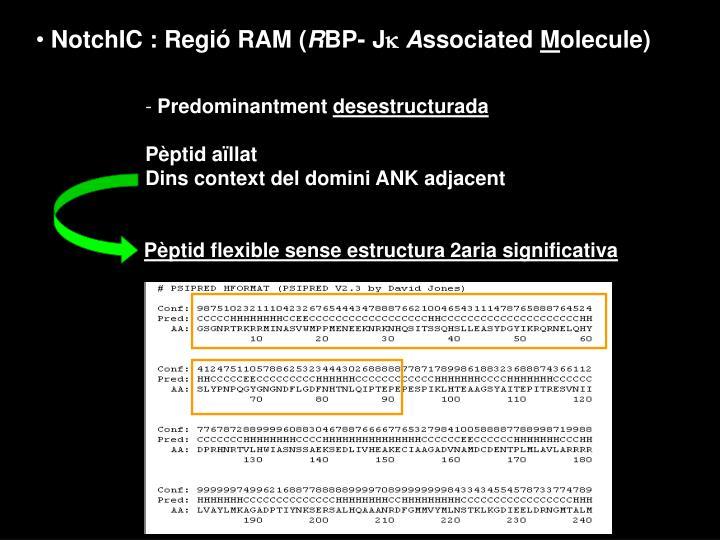 NotchIC : Regió RAM (