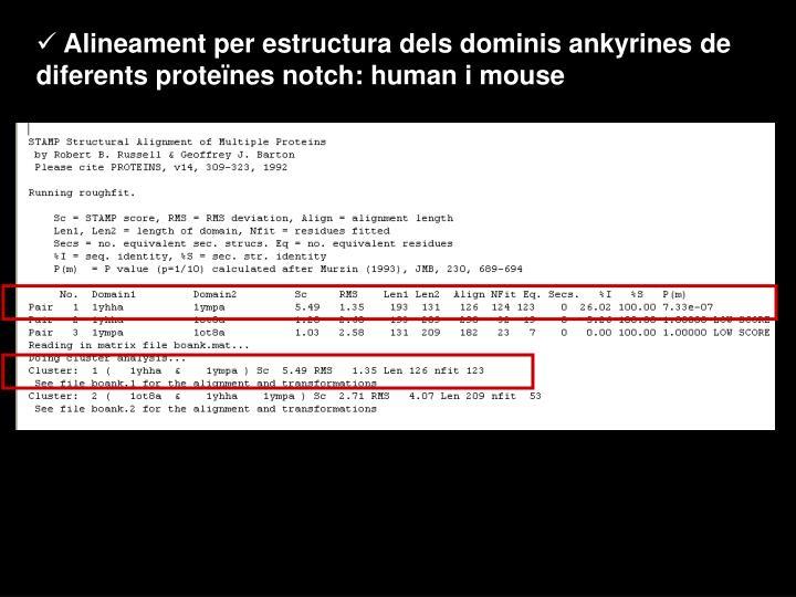 Alineament per estructura dels dominis ankyrines de diferents proteïnes notch: human i mouse