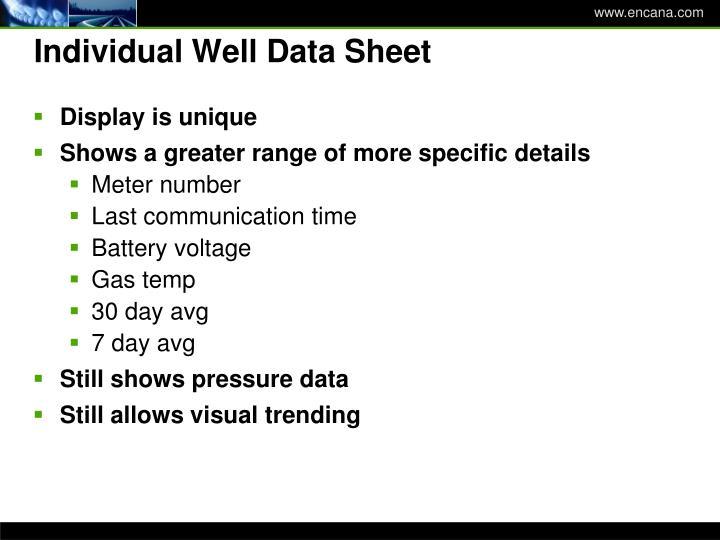 Individual Well Data Sheet