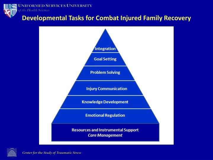 Developmental Tasks for Combat Injured Family Recovery