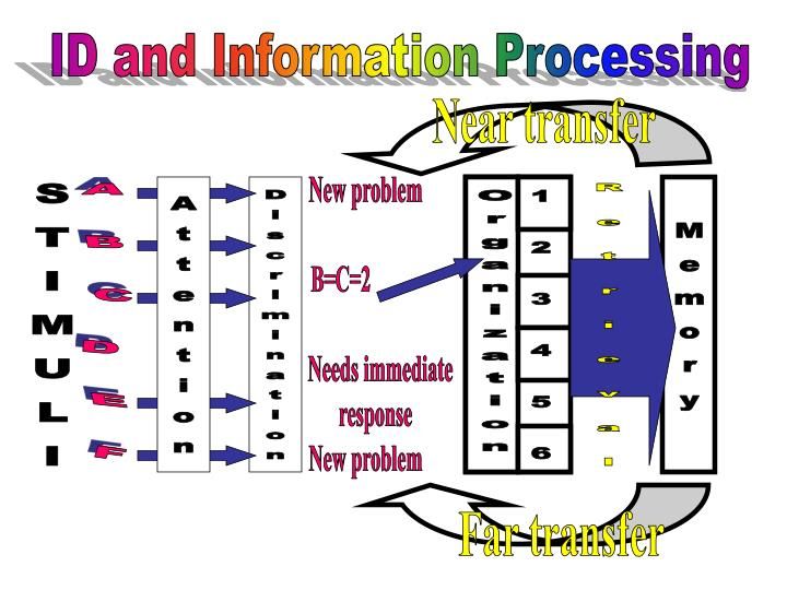 ID and Information Processing