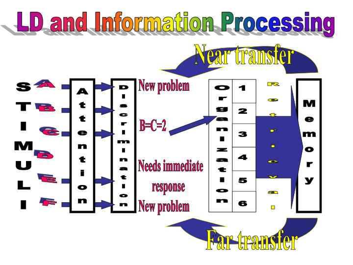 LD and Information Processing