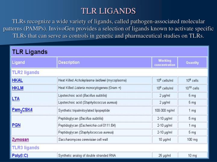 TLR LIGANDS