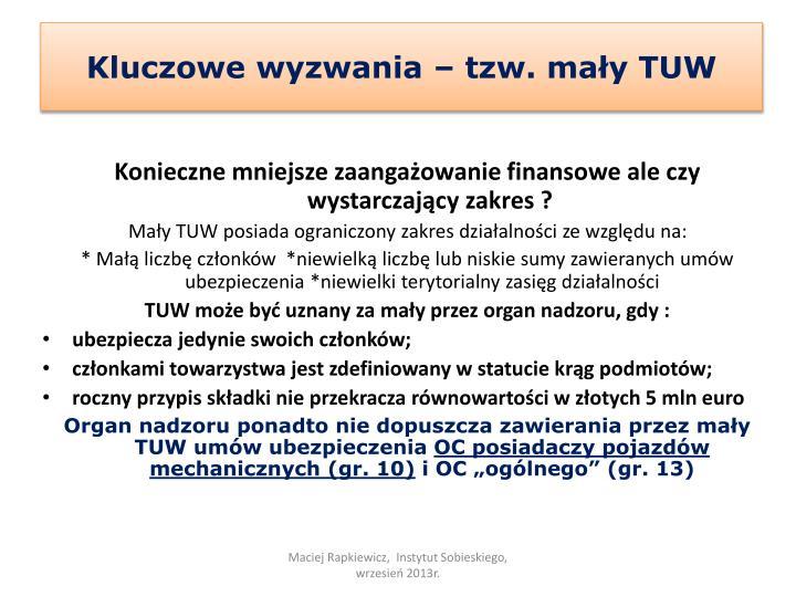 Kluczowe wyzwania – tzw. mały TUW