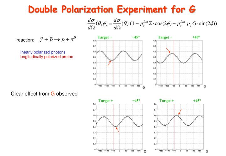 Double Polarization Experiment for G