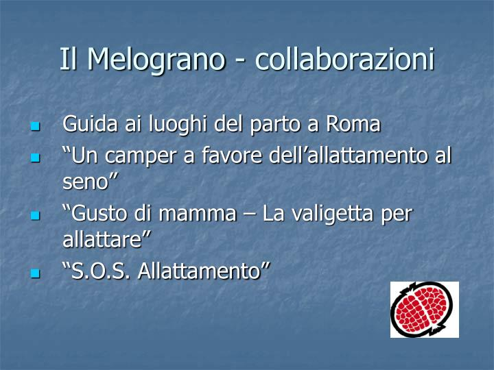 Il Melograno - collaborazioni