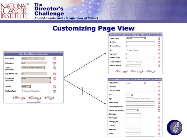 Customizing Page View
