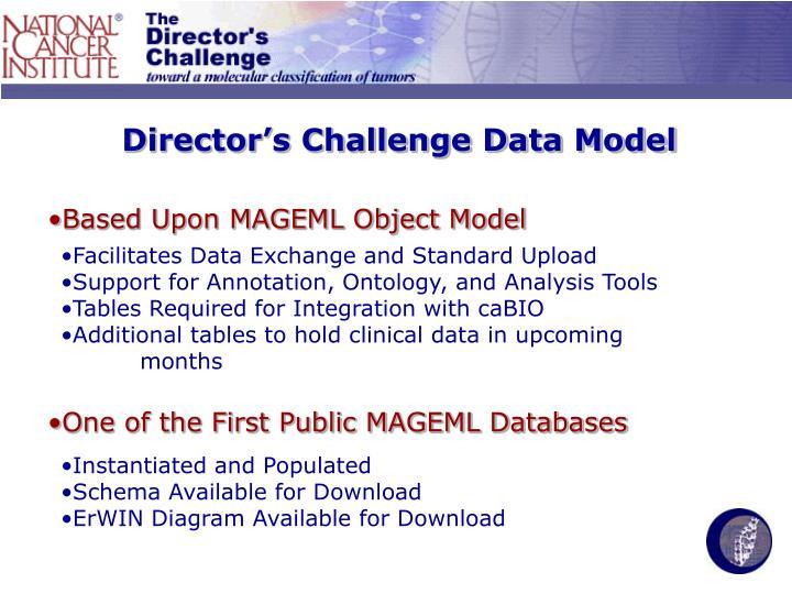 Director's Challenge Data Model