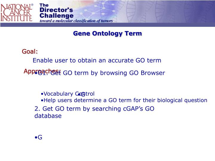 Gene Ontology Term