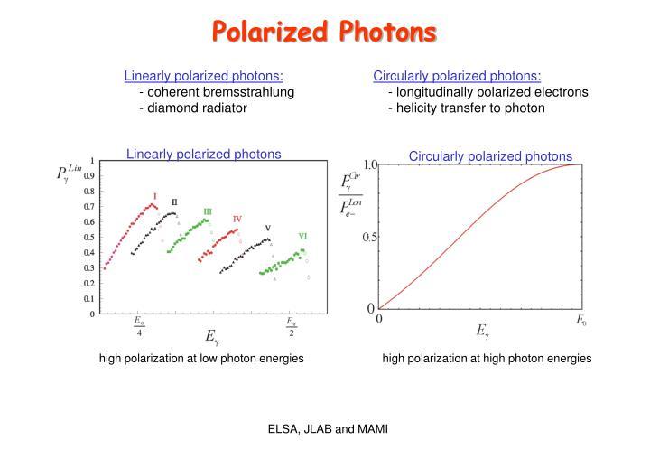 Polarized Photons