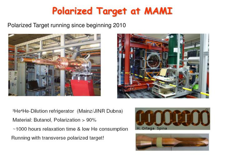 Polarized Target at MAMI