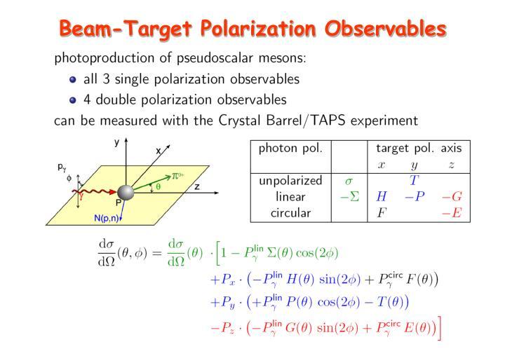 Beam-Target Polarization Observables