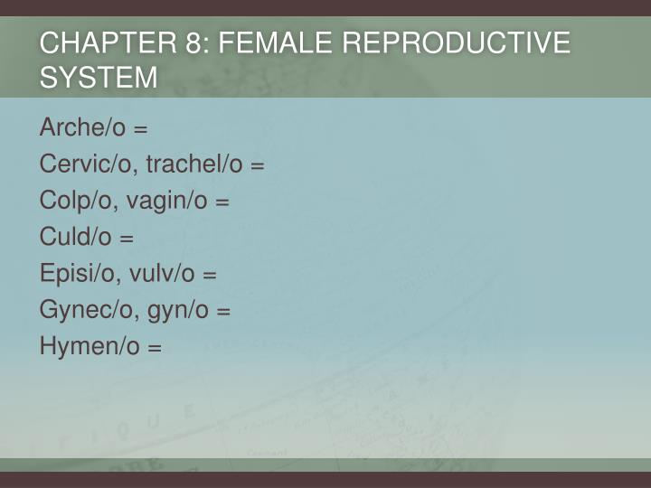 Chapter 8: Female Reproductive System
