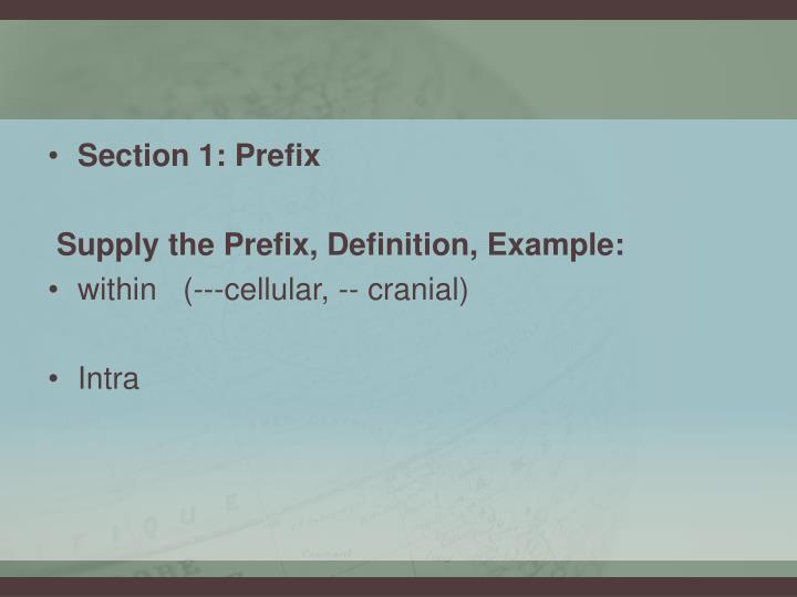 Section 1: Prefix