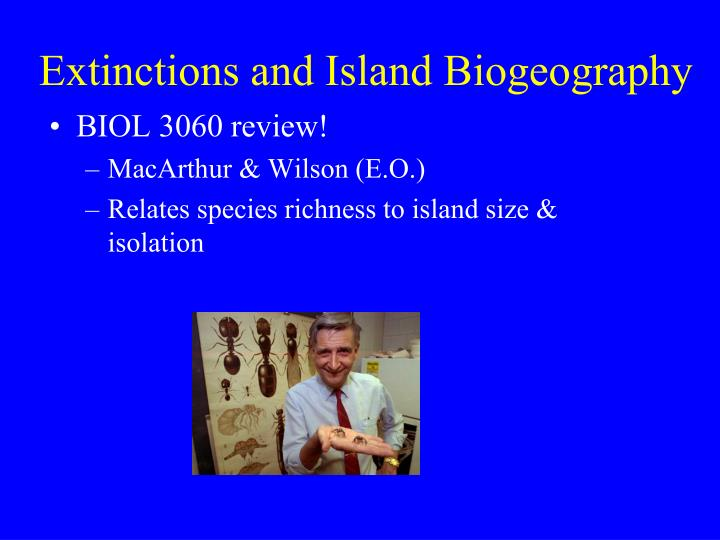 Extinctions and Island Biogeography