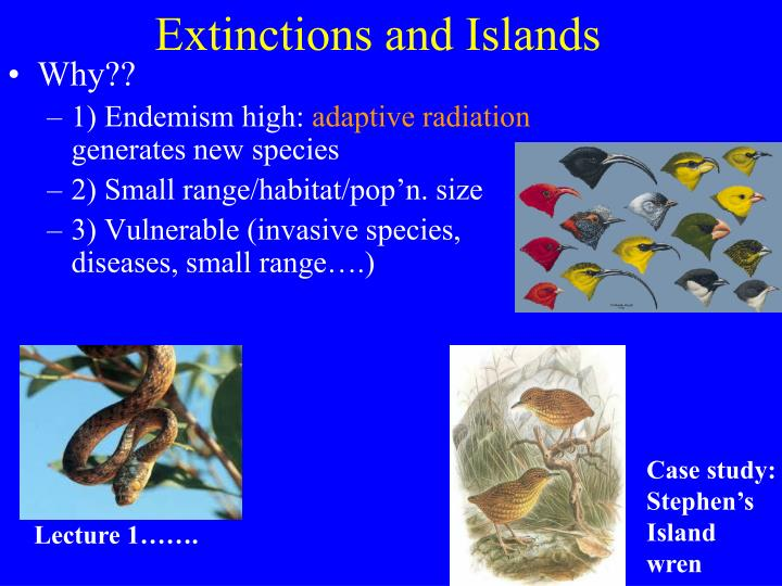 Extinctions and Islands