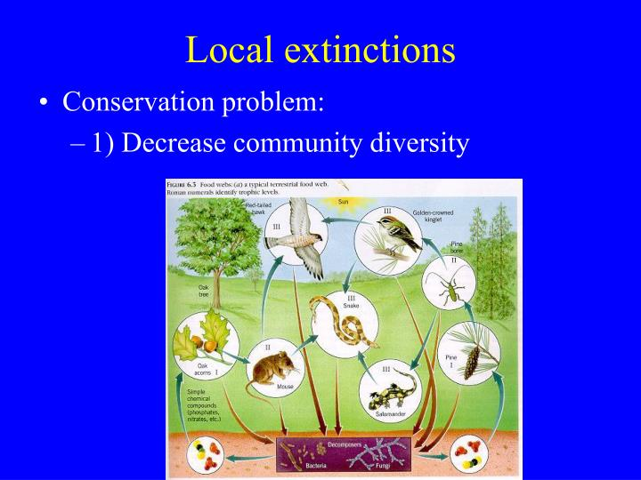 Local extinctions