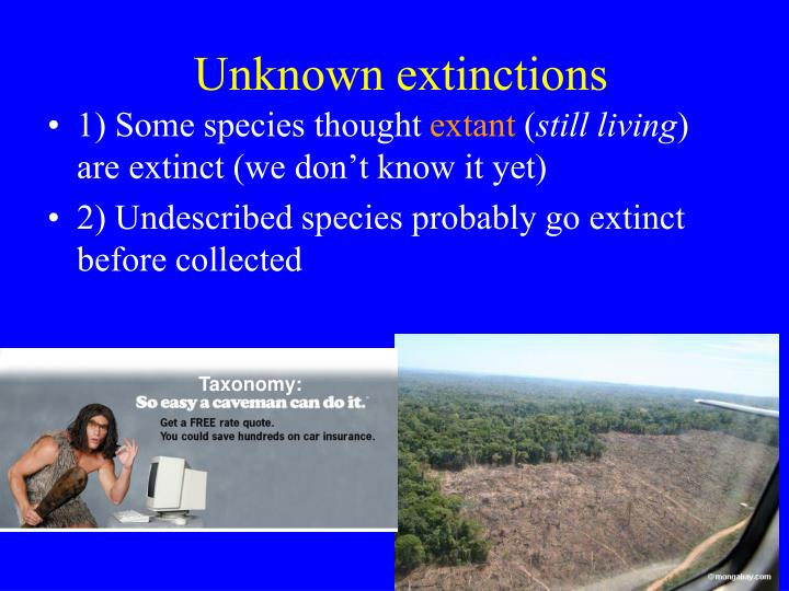 Unknown extinctions
