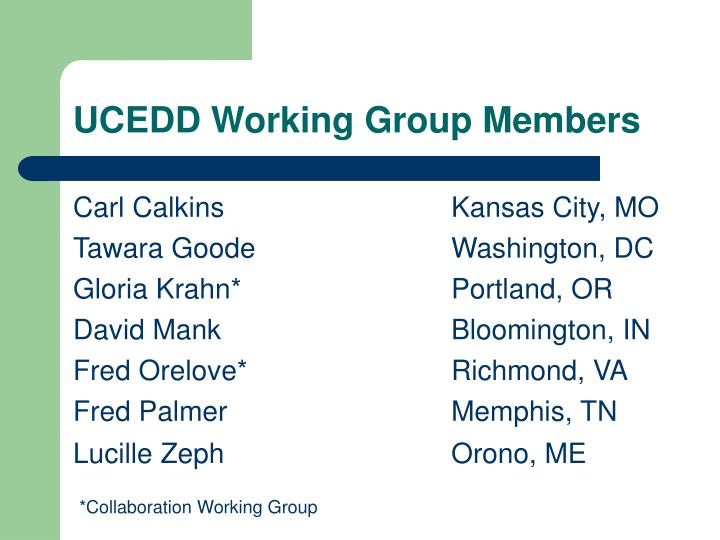 UCEDD Working Group Members