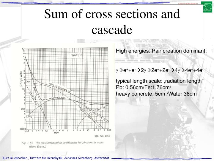 Sum of cross sections and cascade