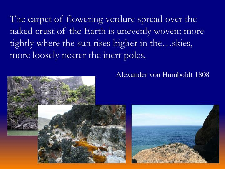 The carpet of flowering verdure spread over the naked crust of the Earth is unevenly woven: more tig...