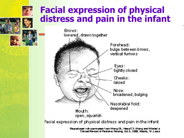 Facial expression of physical distress and pain in the infant