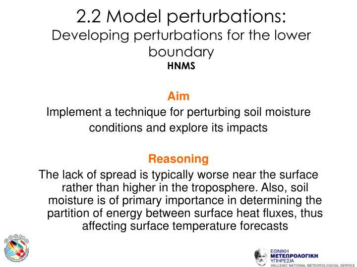 2.2 Model perturbations: