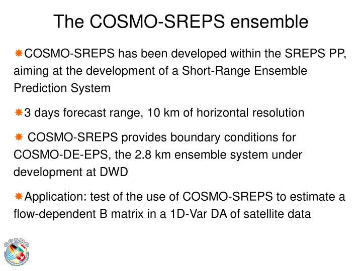 The COSMO-SREPS ensemble