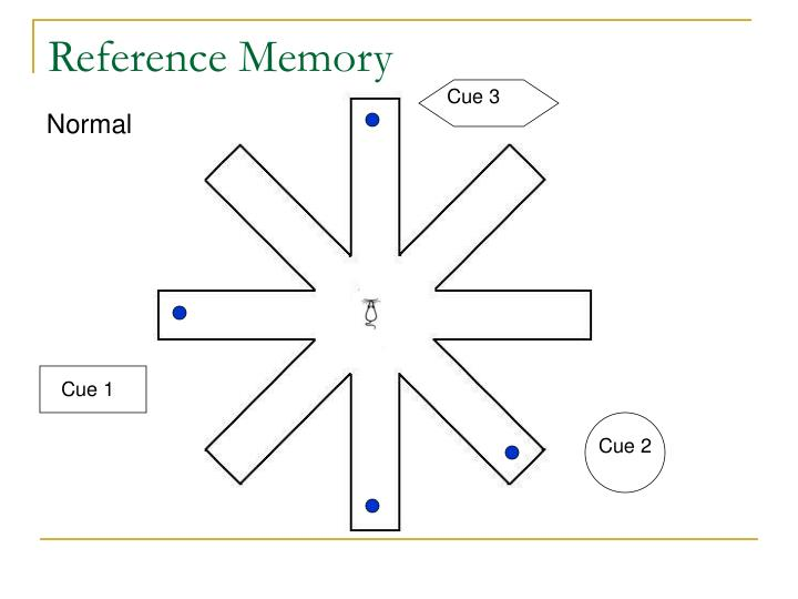 Reference Memory