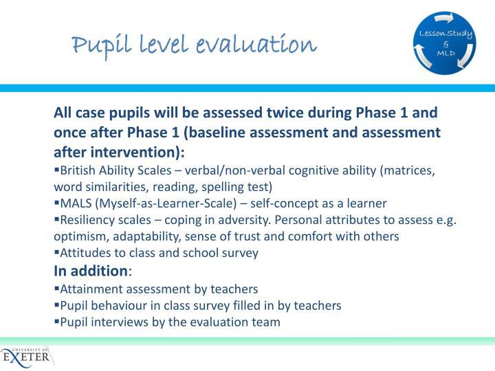 Pupil level evaluation
