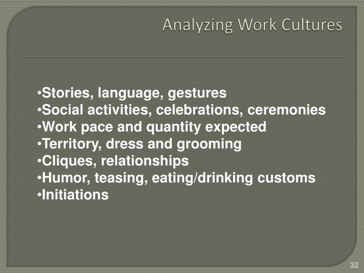 Analyzing Work Cultures