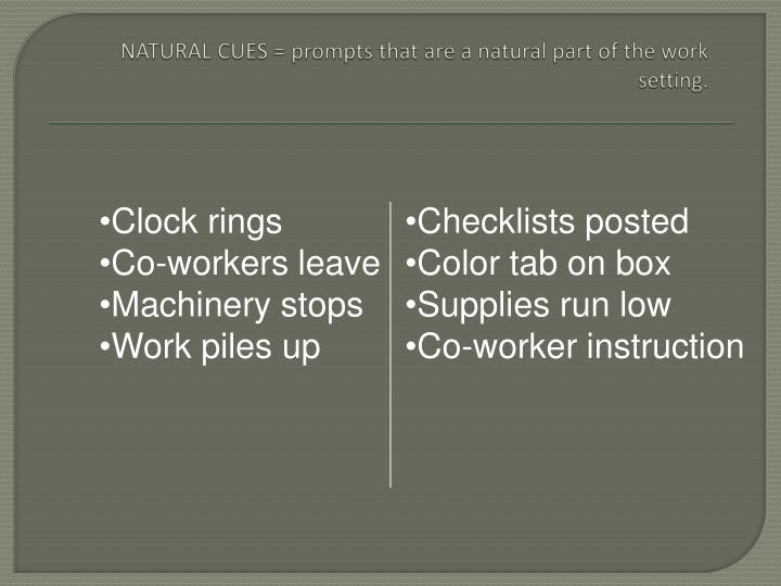 NATURAL CUES = prompts that are a natural part of the work setting.