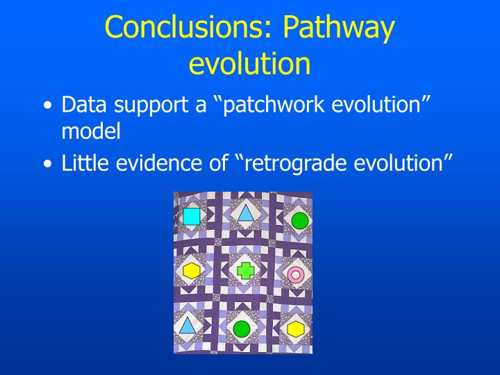 Conclusions: Pathway evolution