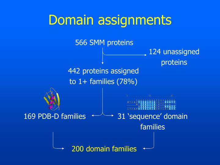 Domain assignments