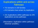 duplications within and across pathways