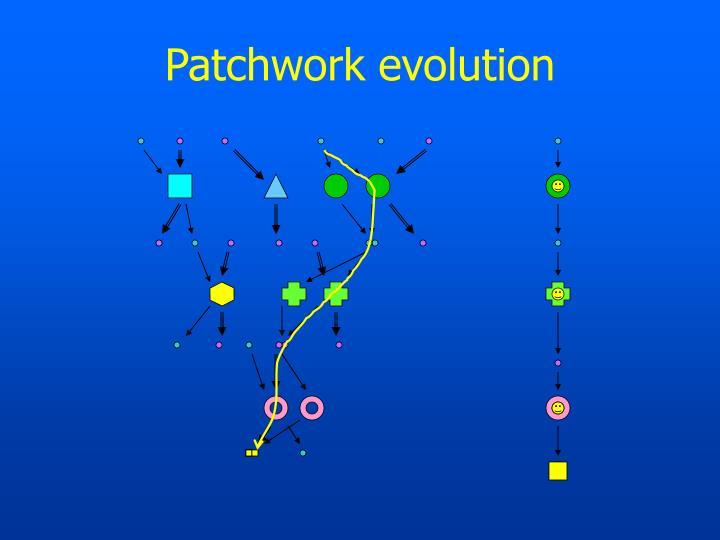 Patchwork evolution