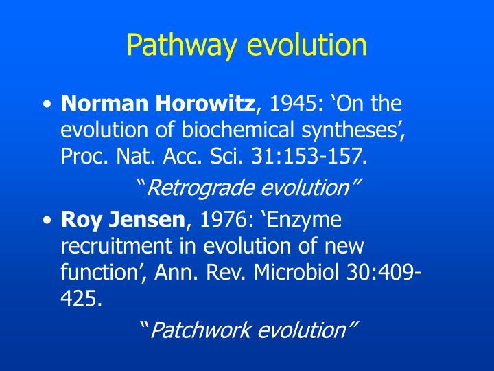 Pathway evolution
