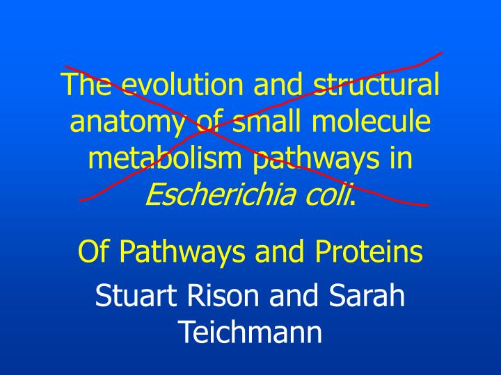 the evolution and structural anatomy of small molecule metabolism pathways in escherichia coli