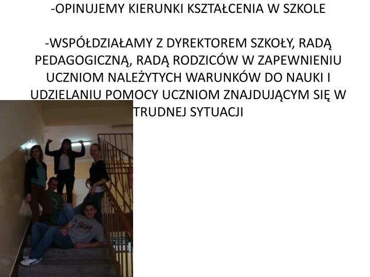 -OPINUJEMY KIERUNKI KSZTAŁCENIA W SZKOLE
