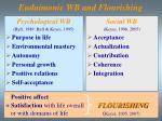 eudaimonic wb and flourishing