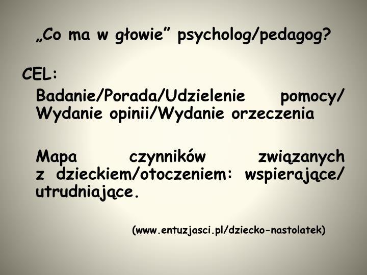 """""""Co ma w głowie"""" psycholog/pedagog?"""