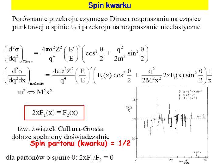 Spin kwarku
