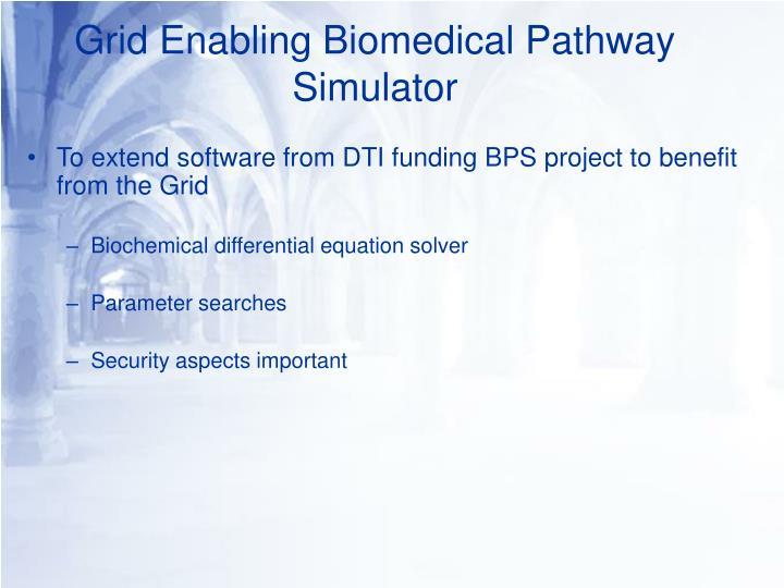 Grid Enabling Biomedical Pathway Simulator
